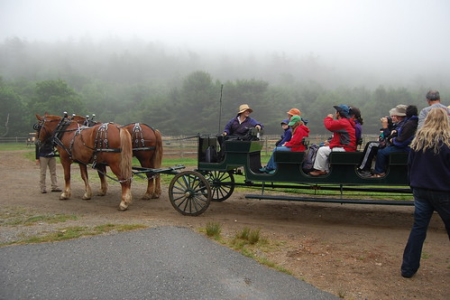 Wildwood Stables, Acadia National Park