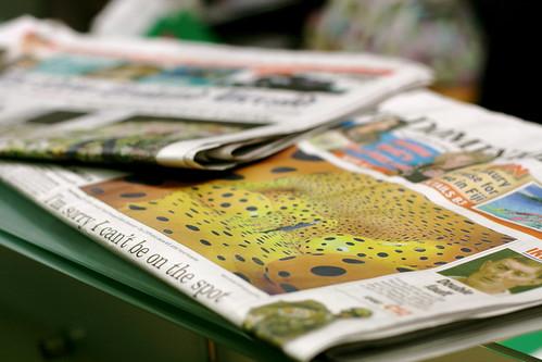 Tuesday: Newspapers feat Kusama