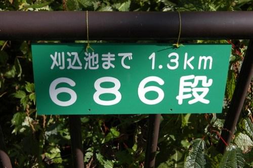 686段ならへっちゃらか?