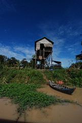A house on stilts outside the flooded forest of Kompong Pluk in Siem Reap