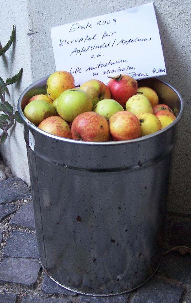 Apfeltonne. Ernte 2009, Klaräpfel für Apfelstrudel/Apfelmus o.ä., bitte mitnehmen zu verarbeiten, Irene 4. Stock, 6. August 2009