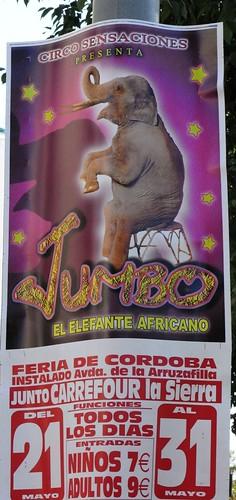 Circo en Córdoba.