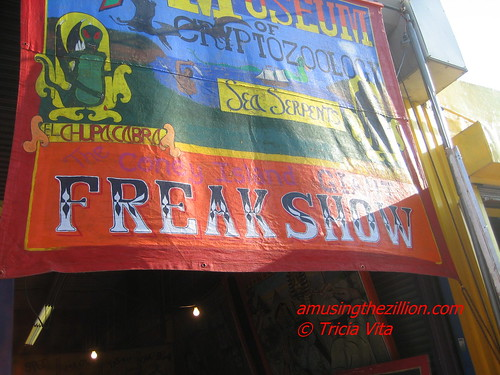 Museum of Cryptozoology Banner on the front of John Strong's Freak Museum, Coney Island, July 12, 2009. Photo © Tricia Vita/me-myself-i via flickr