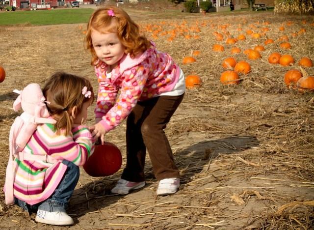 pumpkin patch (1 of 1) (2)