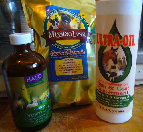 dry patches hair loss dogs