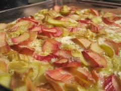 rhubarb squares