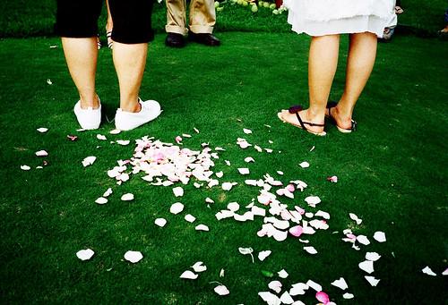 [DD's wedding] 同行