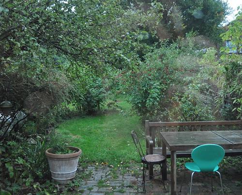 Meg's back garden