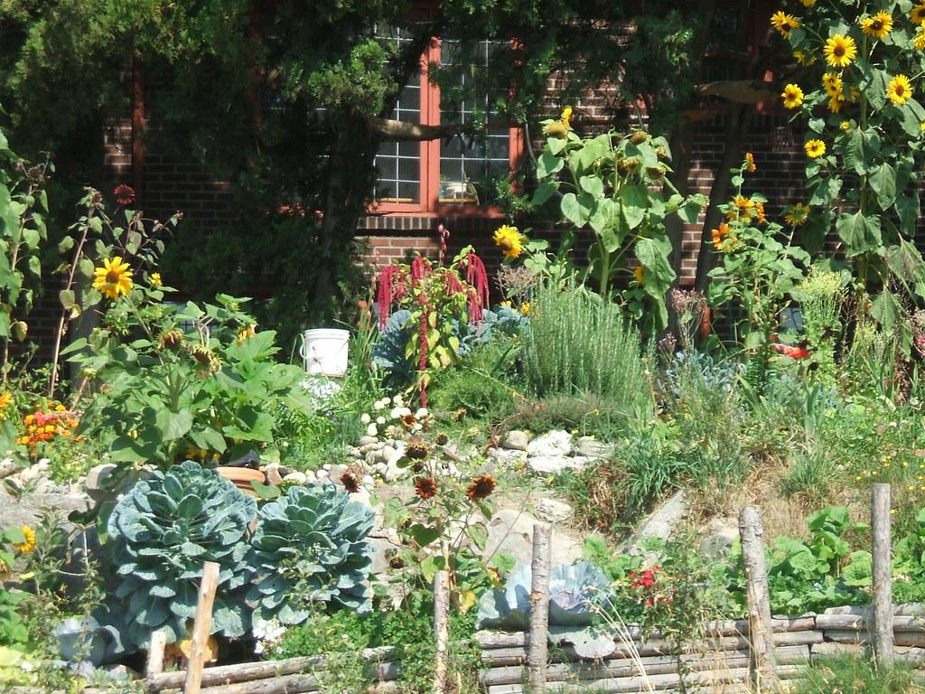 Streetside Seattle garden by I-5 onramp