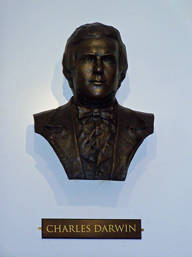 Bust of Darwin by Anthony Smith, Darwin the Geologist