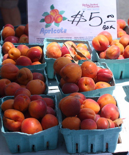 Tenafly Farmers Market, July 19, 2009 by you.