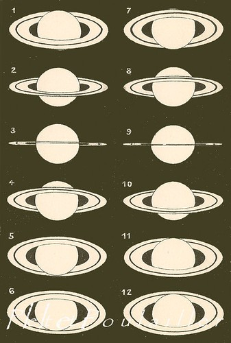 the estate of things chooses vintage planets print