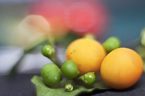 little_fruit