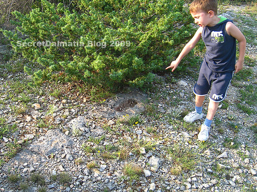 My son pointing to a footprint-like shape in the border stone...
