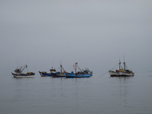 Grey morning in Paracas harbour