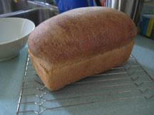 better bread than dead
