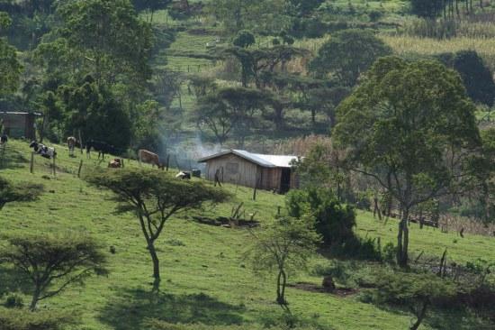 Rift Valley Farmstead