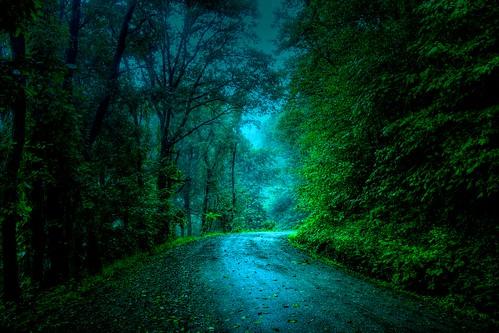 In a Mystical Land