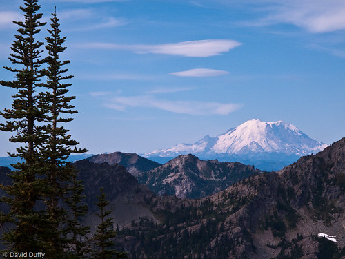 Mt. Rainier from Ingalls Pass