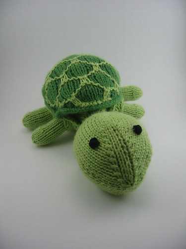 Sheldon turtle