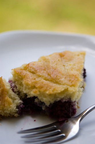 blackberry buttermilk cake (by bookgrl)