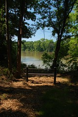 Broad River Bench