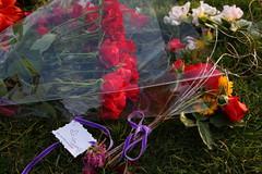 Quinn Driscoll Memorial at WyEast