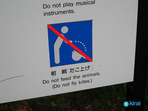 paloma sign kite
