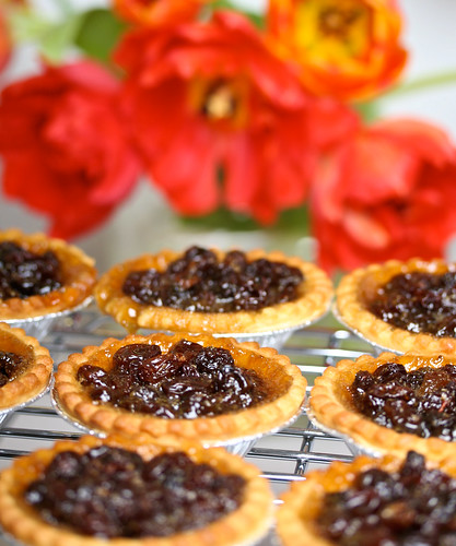 Better Than Butter Tarts by Sarah Kramer Photography.com.
