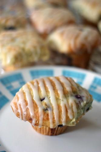 Muffin and Buddies
