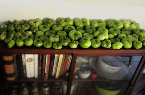 thanks for all the veggies M&A - Ive redecorated the kitchen in tomato. Its a good look.