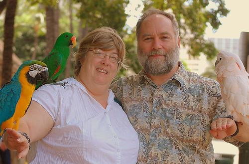 Us & parrots