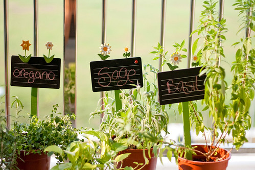 Signboards for the herbs
