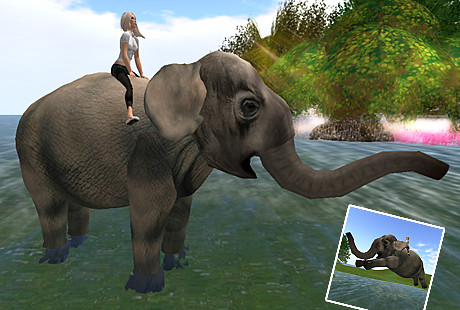 Vooner's Walking Elephant Cioccolata Hunt Prize