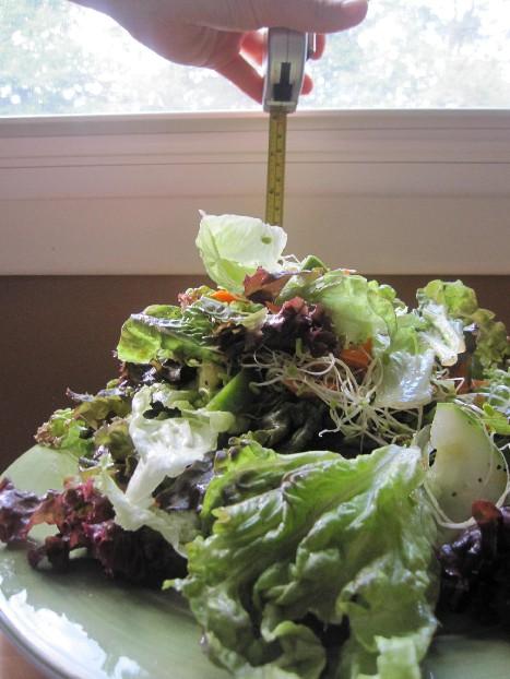 How Big is Salad?