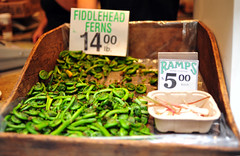 Fiddlehead Ferns & Ramps