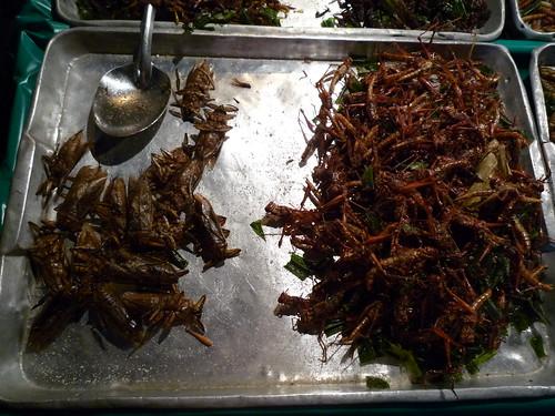 frittierte Kakerlaken