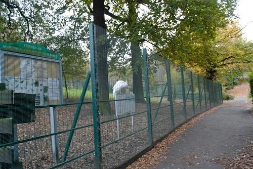 Maryon Wilson Park, Charlton