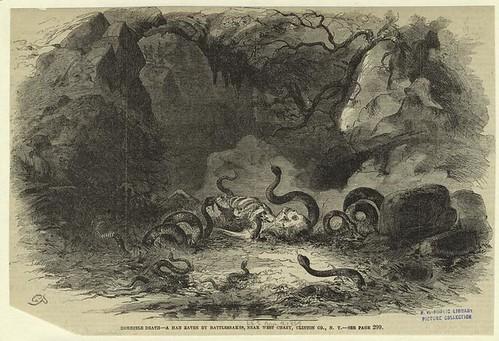 Horrible death--a man eaten by rattlesnakes, near West Chazy...