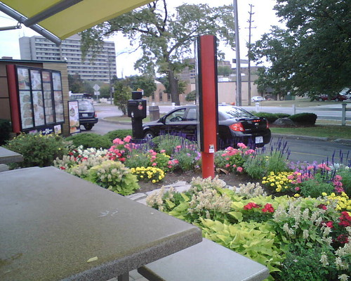Here I sat outside on the McDonalds Patio