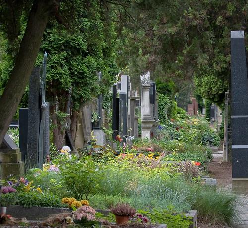 Vyšehrad Cemetery (Vyšehradský hřbitov) by you.