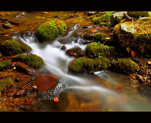 world travel autumn color tourism nature water stone río forest river season de landscape la photo waterfall leaf spain agua nikon october long exposure spirit earth weekend bosque nikkor cascade rioja monasterio espíritu d90 botond horváth valvanera 1685mm