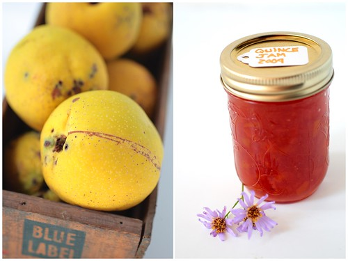 Quince and Jam