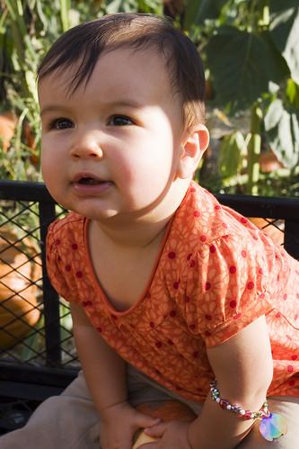 Kaya's 1st Pumpkin Patch Trip