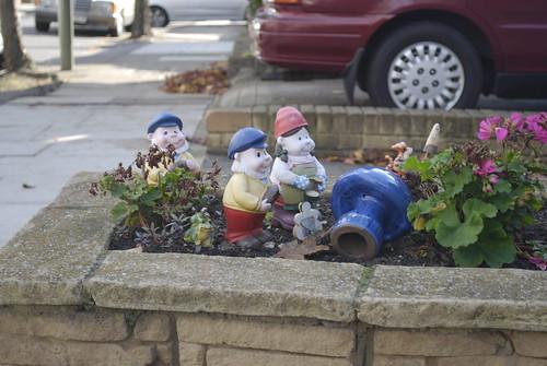 Hendon gnomes