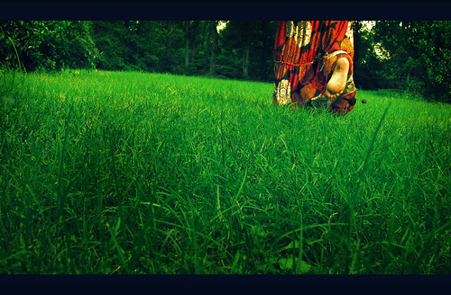 176/365 summer's end