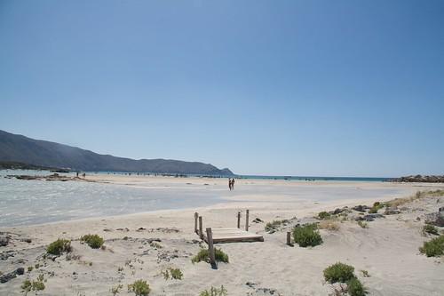 Elafonisin vakuuttava ranta