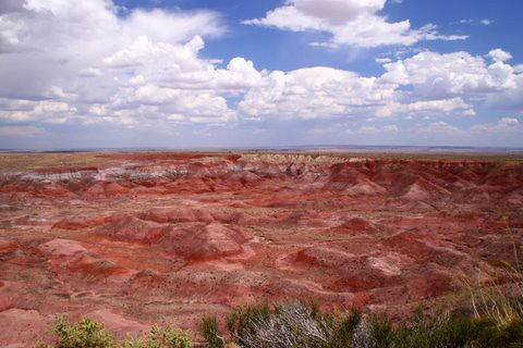 the painted desert, petrified forest national park