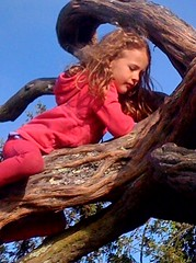 my daughter -- climbing to new heights