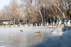Parc Városliget - Budapest